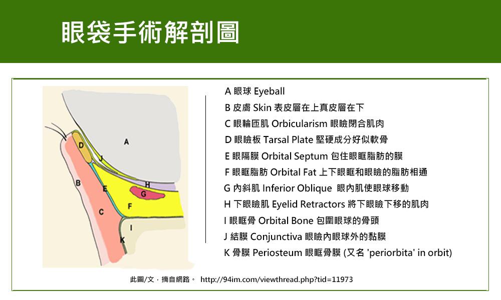 首璽格爾-服務項目-眼袋手術3